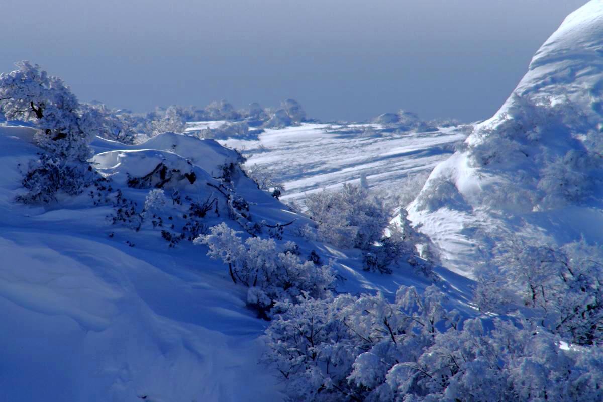 冬の箕輪山の風景_d0106628_021583.jpg