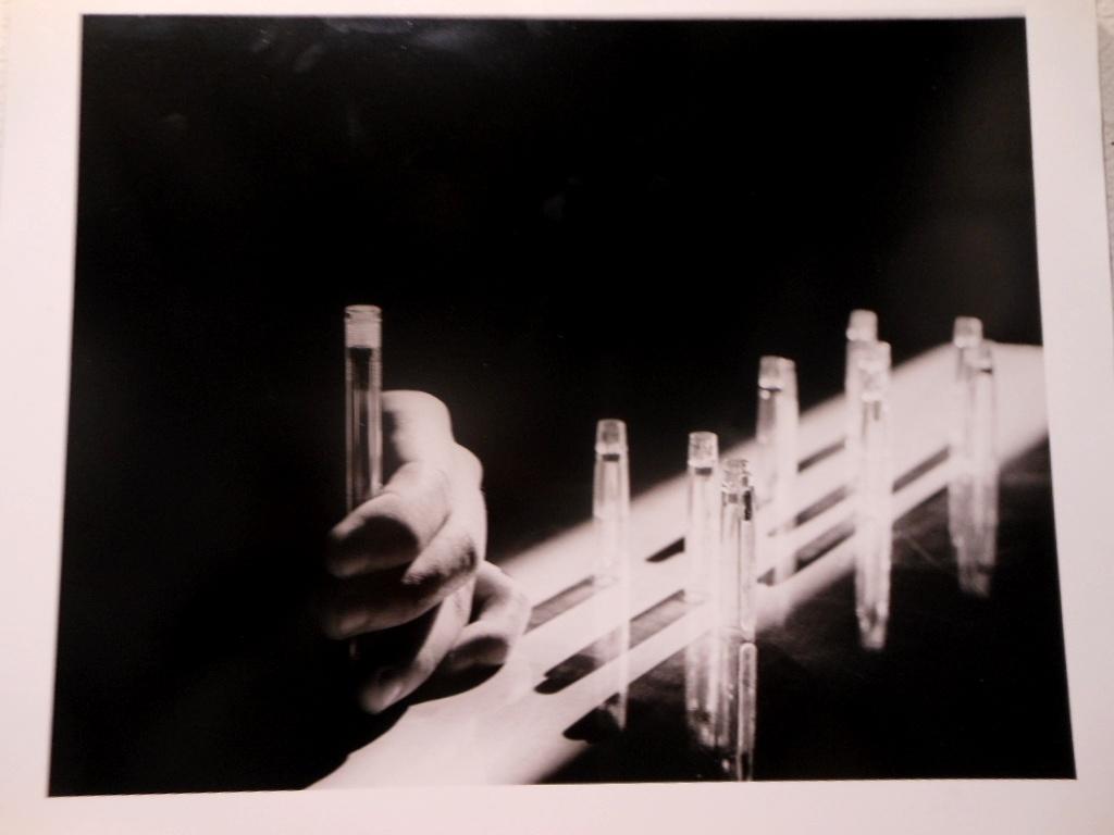1630)「札幌大学写真部 卒業記念写真展」 市民ギャラリー 2月22日(水)~2月26日(日)_f0126829_10141844.jpg