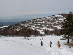 入笠山は春の光_f0019247_12451171.jpg