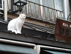 猫の日に猫の町へ。。。_e0232150_20291953.jpg