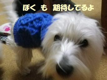 b0239151_124857.jpg