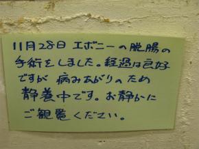 a0021956_15585349.jpg