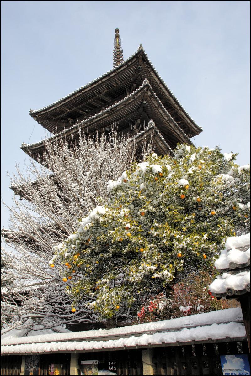 雪景色 <京都>_f0021869_11191024.jpg