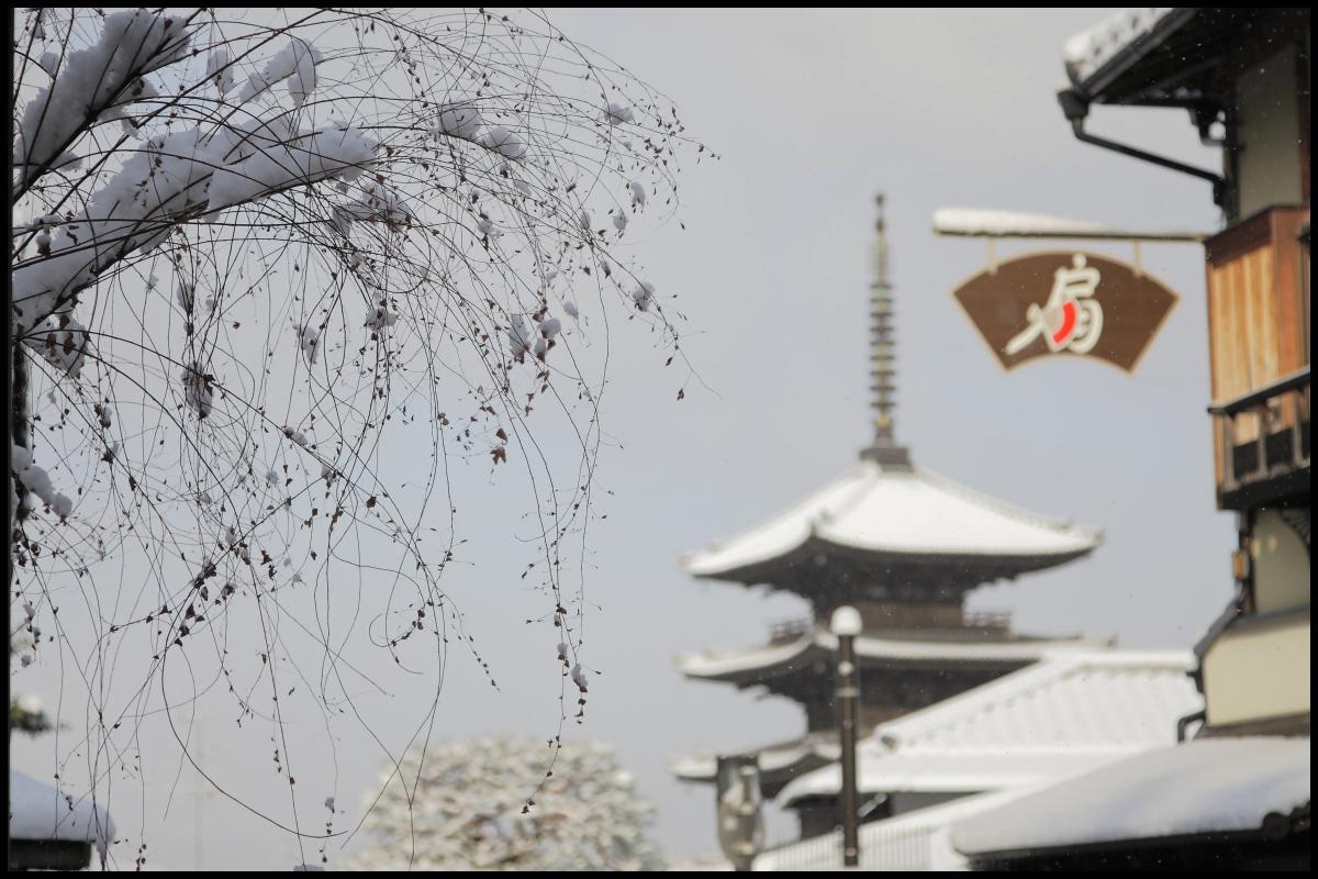 雪景色 <京都>_f0021869_2285292.jpg