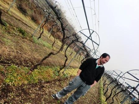 九州ワイン紀行 その1 都農ワイナリー編_b0206074_14481210.jpg