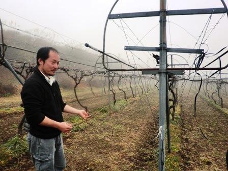 九州ワイン紀行 その1 都農ワイナリー編_b0206074_14484163.jpg