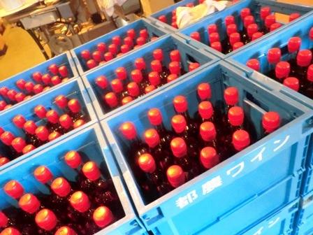 九州ワイン紀行 その1 都農ワイナリー編_b0206074_1454741.jpg
