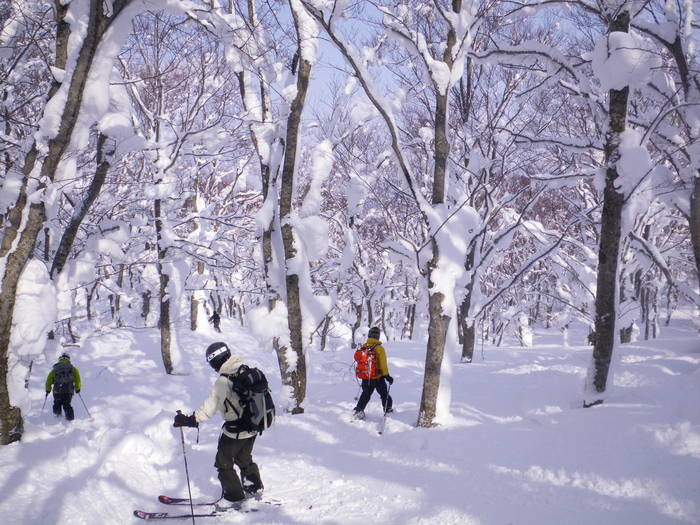 八甲田極楽スキー&温泉ツアー(その4) ~ 2012年2月14日_f0170180_20435791.jpg