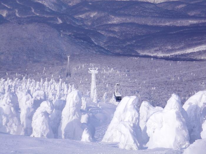 八甲田極楽スキー&温泉ツアー(その4) ~ 2012年2月14日_f0170180_7132752.jpg