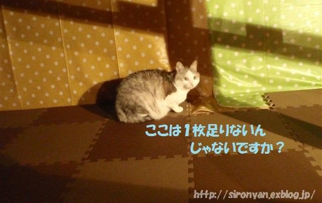 a0159490_15405727.jpg