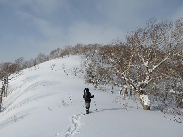 2月22日、漁(いざり)岳-その2-_f0138096_22114511.jpg