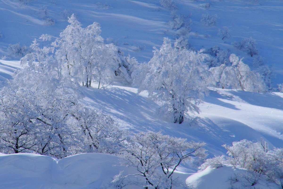 厳冬の箕輪山の風景_d0106628_18431813.jpg