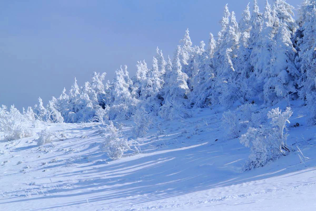 厳冬の箕輪山の風景_d0106628_18452066.jpg