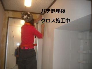 f0031037_19102767.jpg