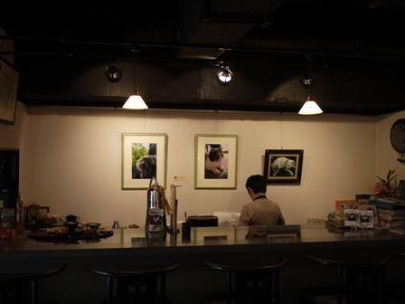 猫のお友だち マミちゃん編 画廊喫茶三点鐘。_a0143140_211183.jpg