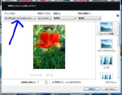 f0003174_9524432.jpg