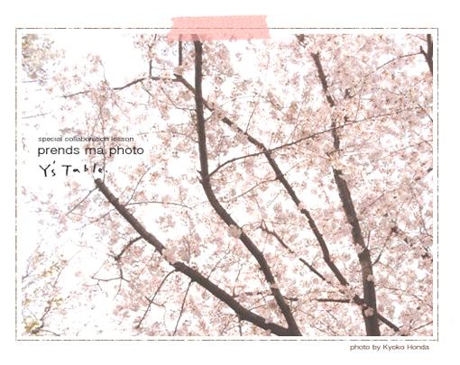 春のフォトレッスンのおしらせ_d0174704_22521177.jpg
