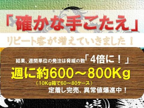 f0070004_15481912.jpg
