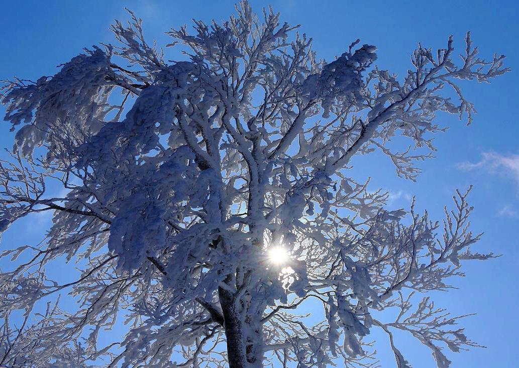 厳冬の箕輪山の風景_d0106628_1357548.jpg
