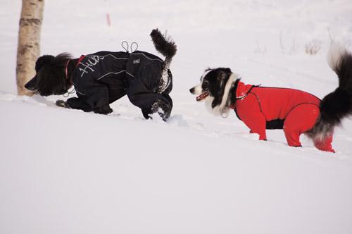 雪遊び パート2_e0232343_15101452.jpg