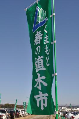 熊本の旅-植木市と黒川温泉-_a0134952_22102935.jpg