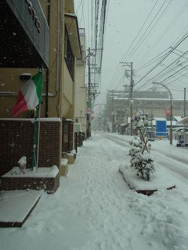 朝からびっくり!雪降り!_e0140354_1127018.jpg