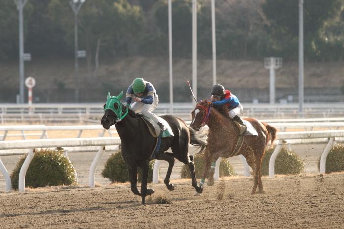 2012年2月18日(土) 高知競馬 2R C3-4_a0077663_13594248.jpg