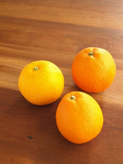 春の柑橘祭り!ナチュラルスイーツの会_d0128268_1751566.jpg