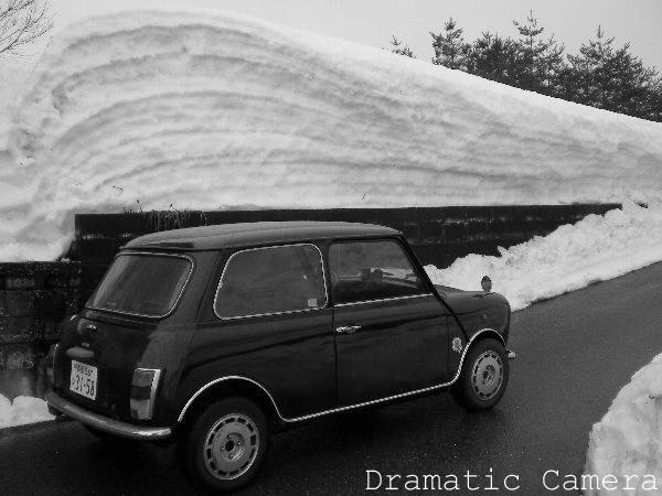 雪にたたられ_d0107372_23253118.jpg