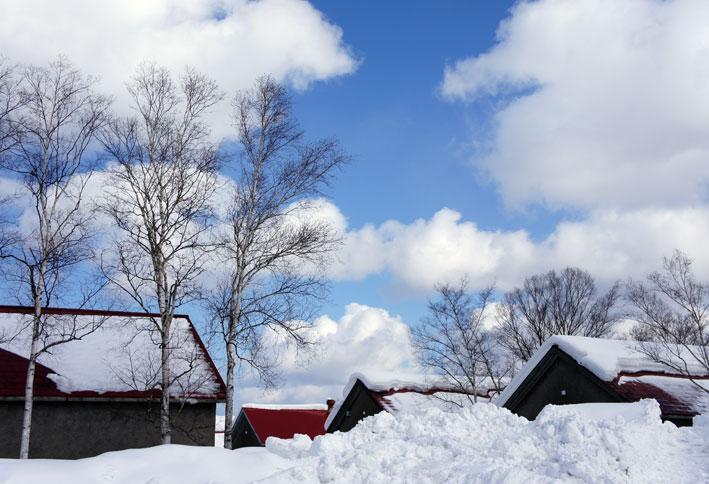 昨日は雪の余市へ_b0145296_6162124.jpg