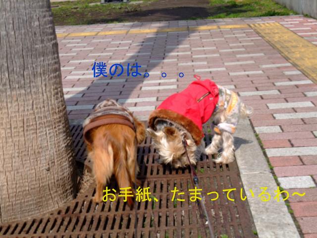 b0203596_1516811.jpg