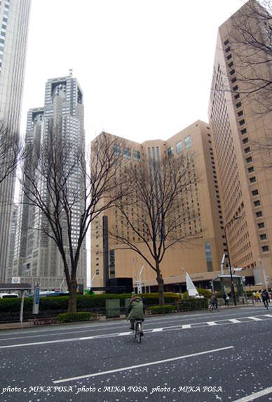 東京マラソン 2012_b0164803_16105420.jpg