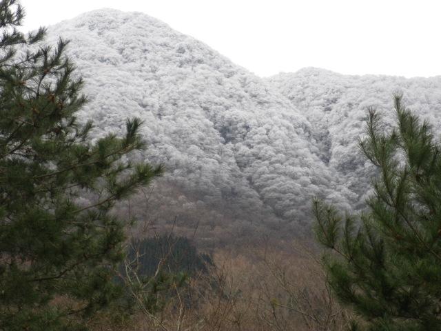 また、山は雪_e0179508_12585374.jpg