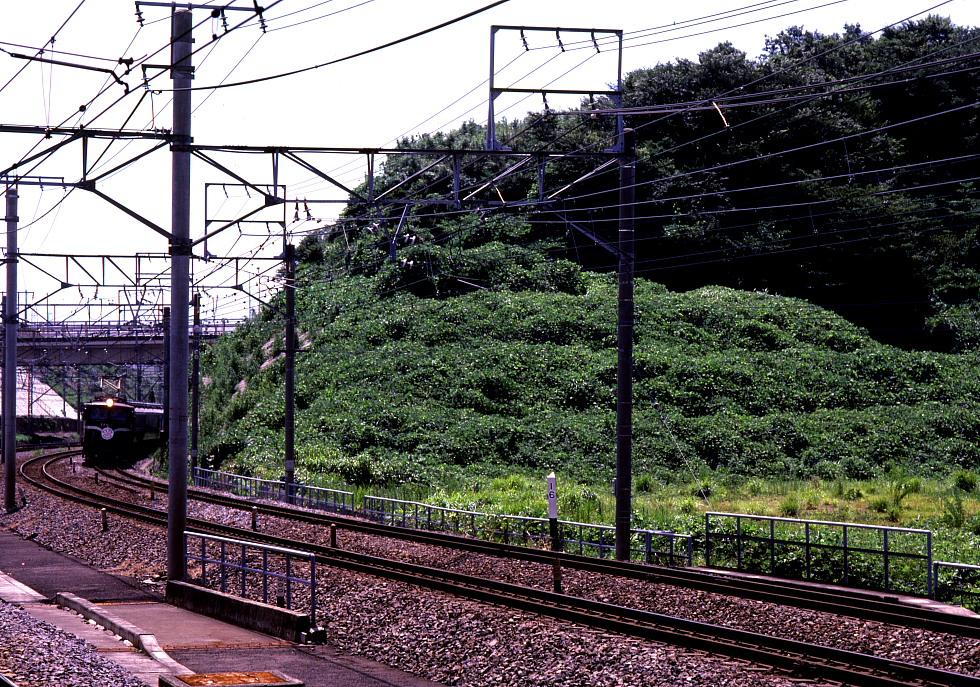 駅に迫る夏草 - 1984年 -_b0190710_23374894.jpg
