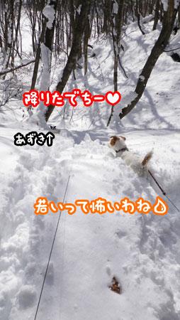 f0129214_1044346.jpg
