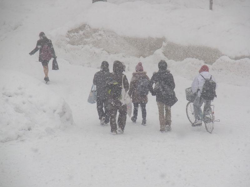 突然の猛吹雪と葬送_c0025115_2243955.jpg