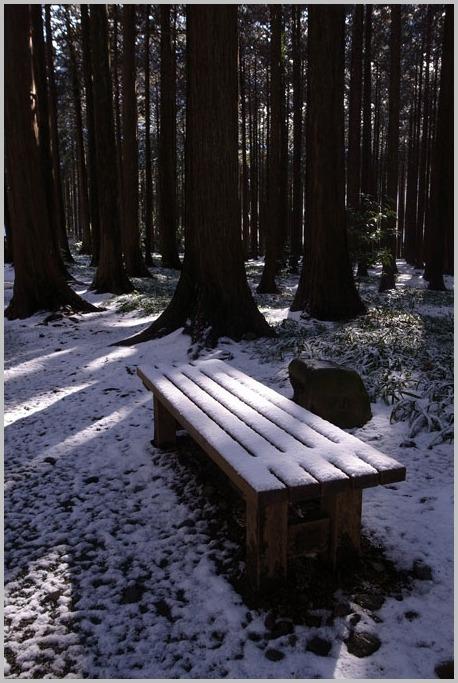 雪の中で_d0006718_1028023.jpg