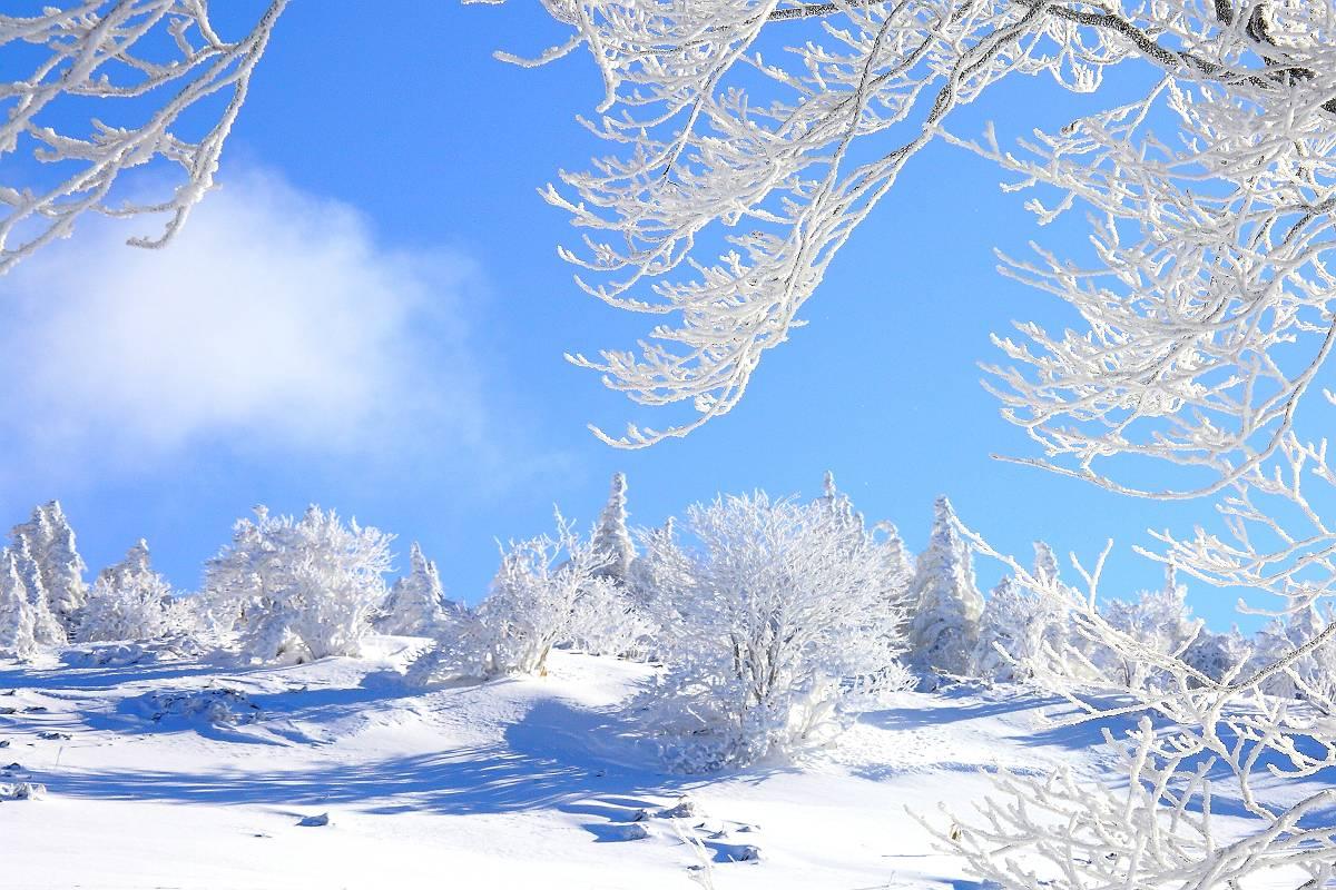 厳冬の箕輪山_d0106628_717378.jpg
