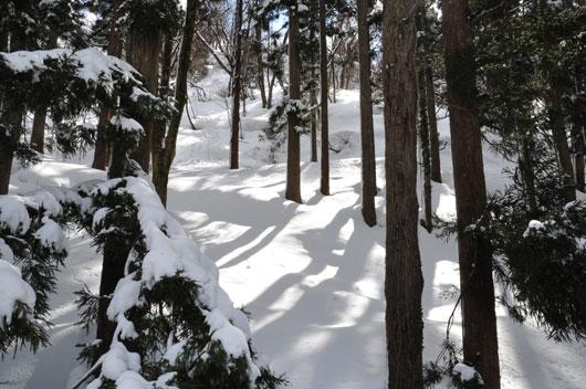雪模様3_c0093046_8565987.jpg