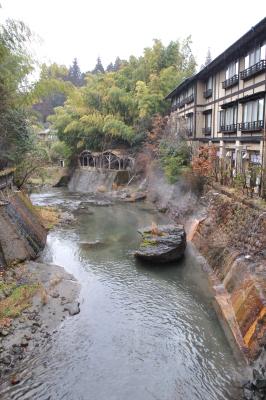 熊本の旅-植木市と黒川温泉-_a0134952_1163041.jpg