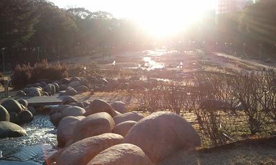 うつぼ公園での休日_f0202682_12533367.jpg