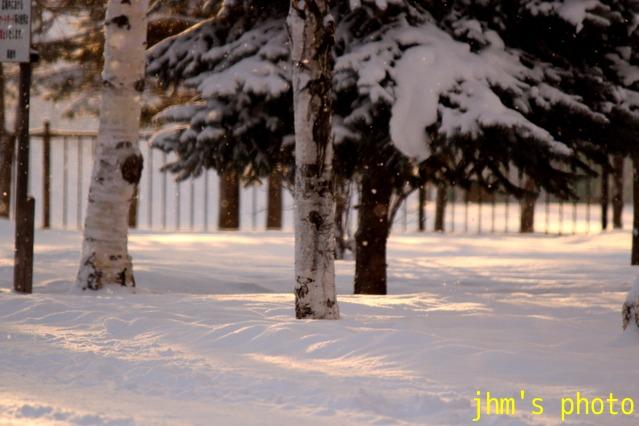 雪掻きと公共性_a0158797_23195558.jpg