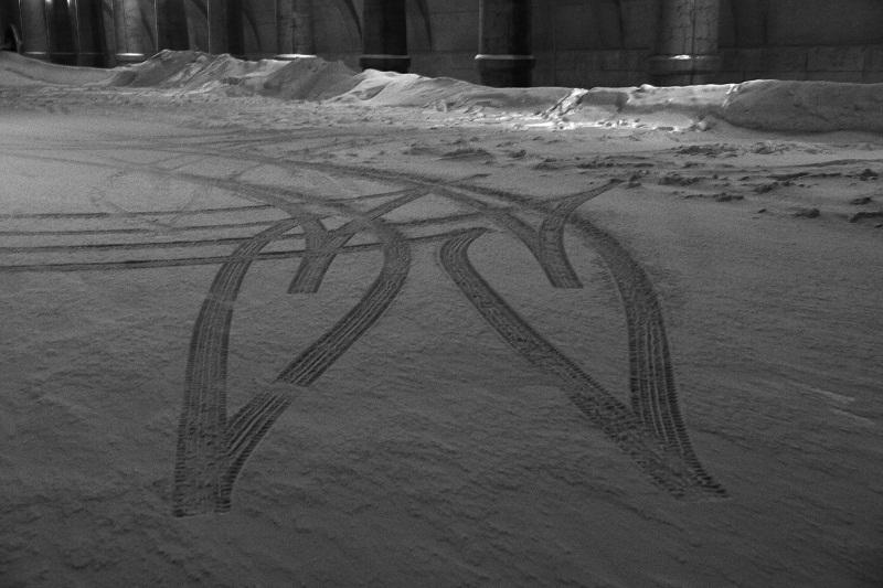 雪の上の蕾_f0033205_9523676.jpg