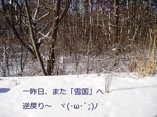 b0200310_163511100.jpg