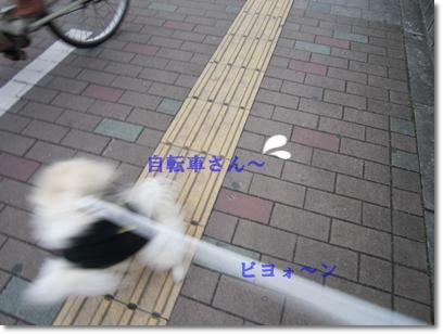 b0167519_10503474.jpg
