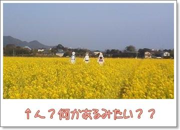 b0153121_13184814.jpg