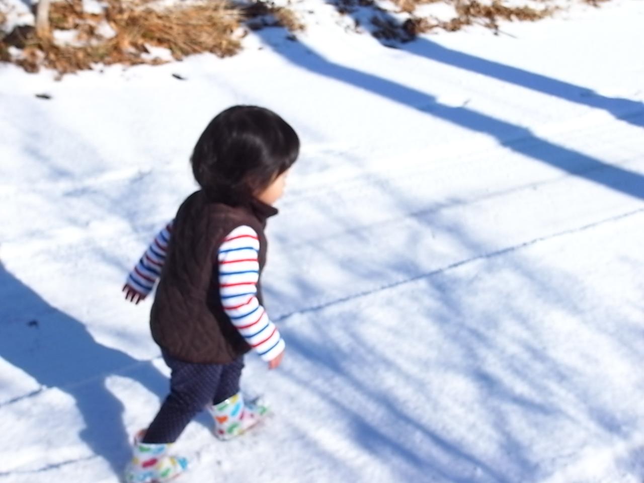 雪・初・体・験_a0182722_0461461.jpg