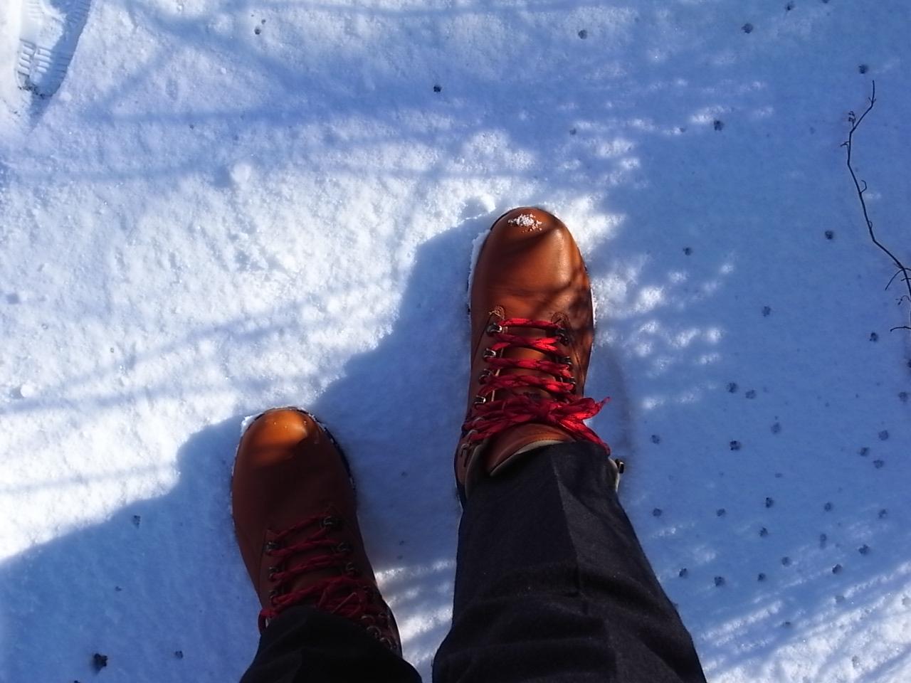 雪・初・体・験_a0182722_0542278.jpg