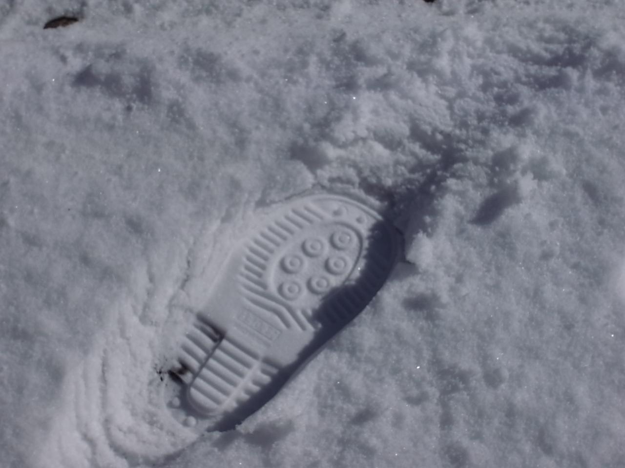 雪・初・体・験_a0182722_0581060.jpg