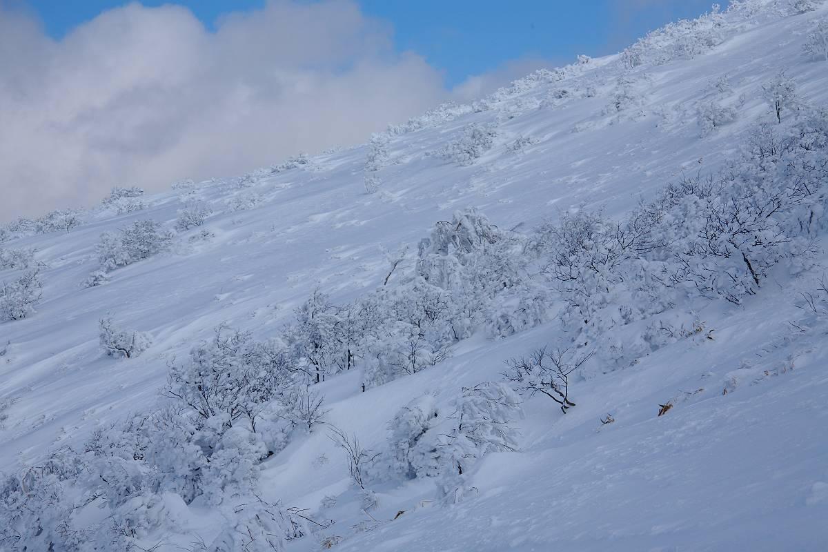 厳冬期の箕輪山の風景_d0106628_9223649.jpg